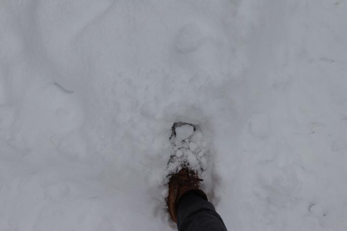 雪に足跡つけ